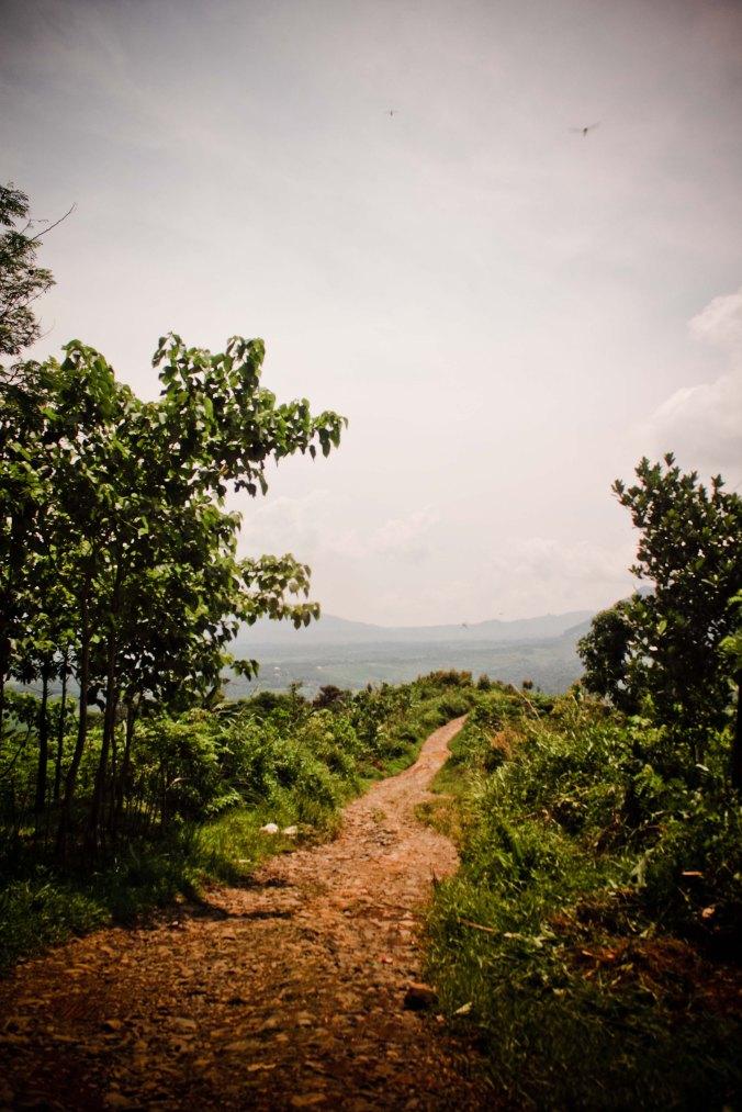 Jalan menuju Prasasti Pasir Awi
