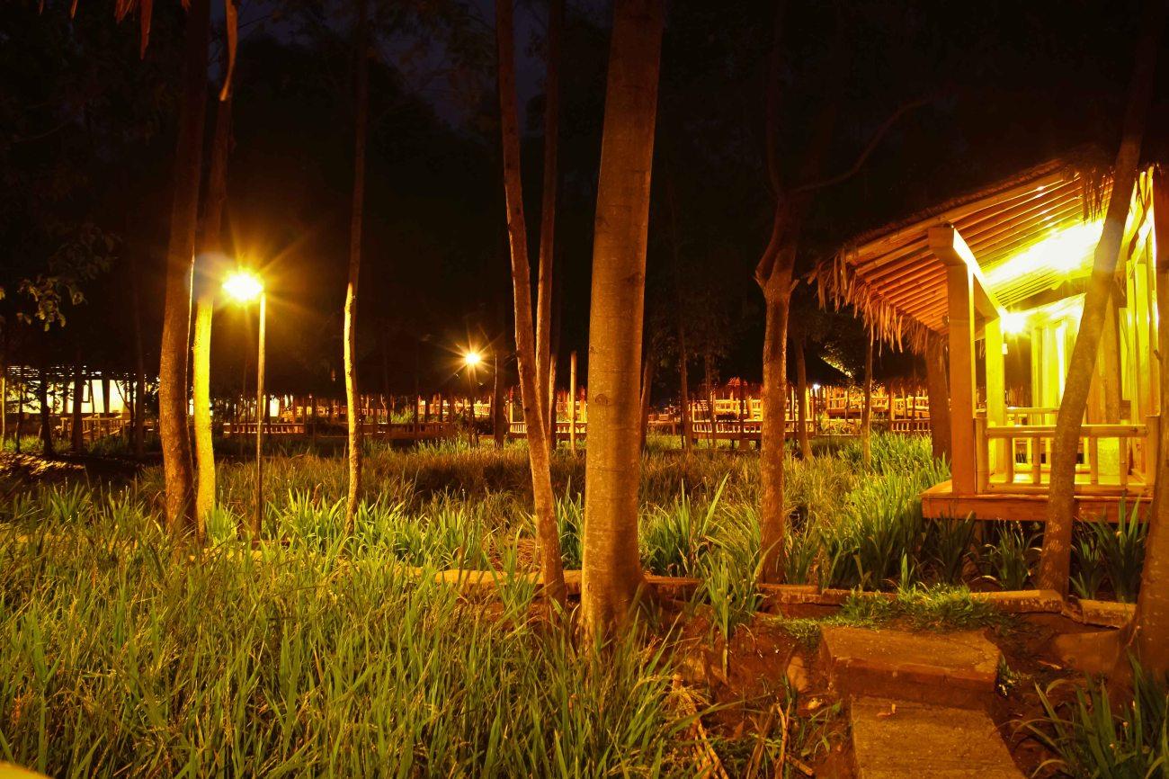 Pemandangan malam hari dengan segala jenis suara kehidupan malam di tengah sawah