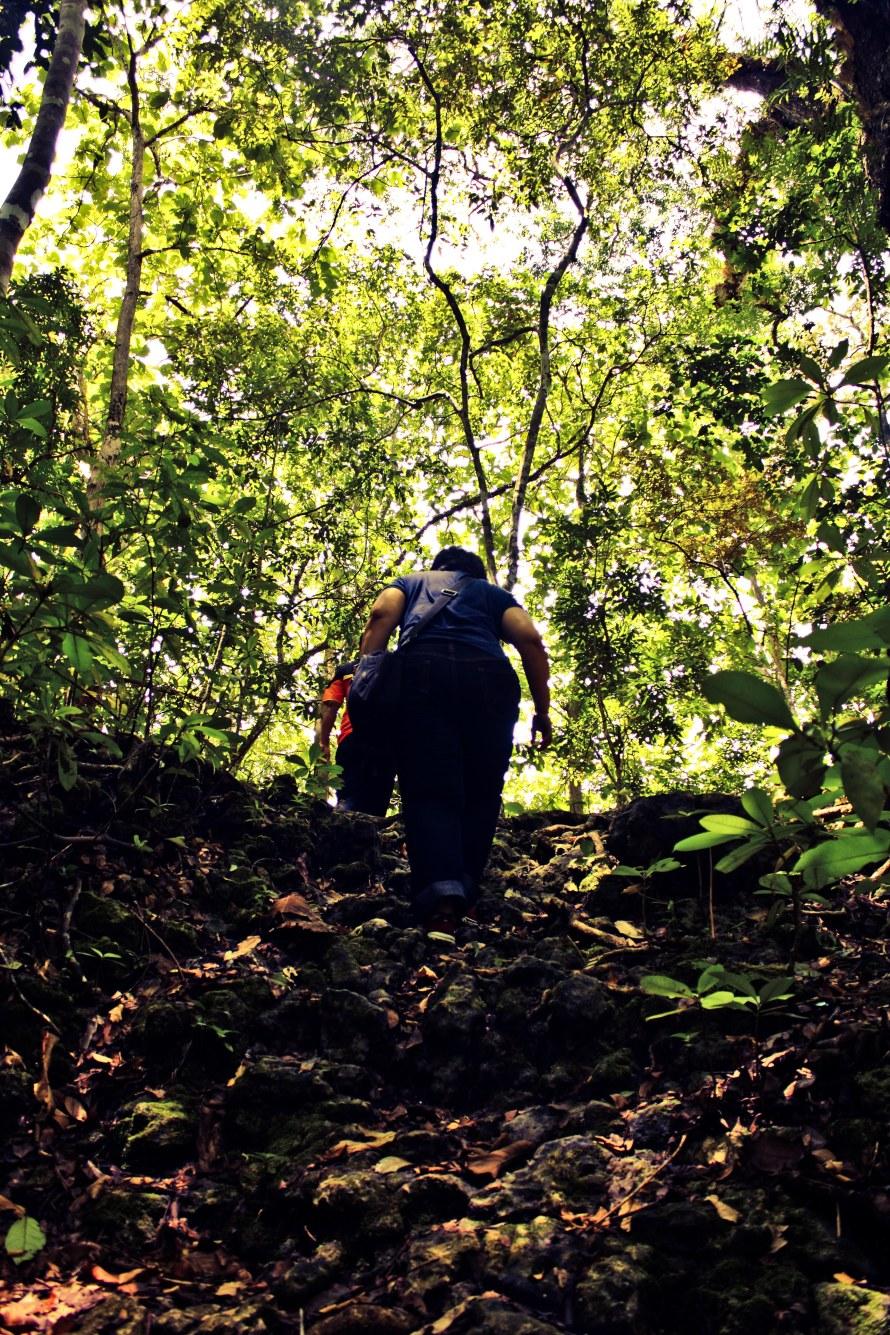 Setelah keluar dari Gua Miring, petualangan ke tengah hutan pun berlanjut.