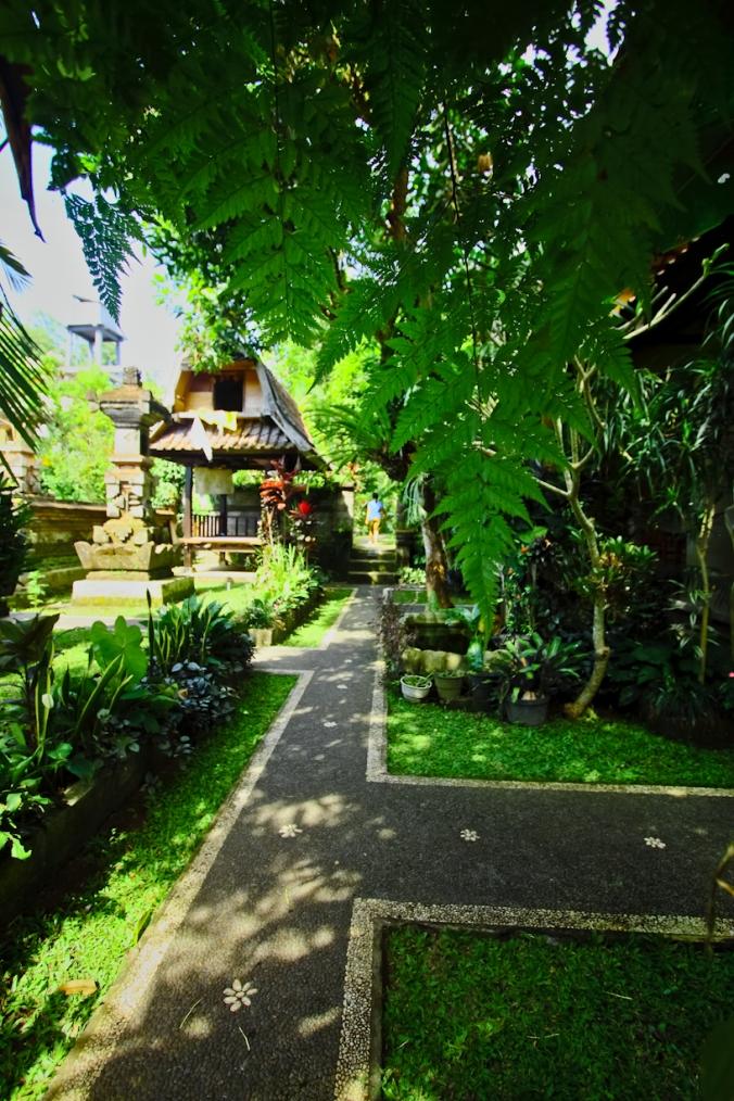 enak ya punya rumah serba hijau penuh pohon.