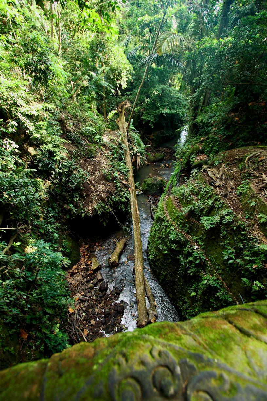 Air sungai mengalir lumayan deras. Jaman dulu, mungkin ya, di sungai ini banyak gadis Bali mandi. Duh! Saya lahir di jaman yang salah nih. Hmmm:d