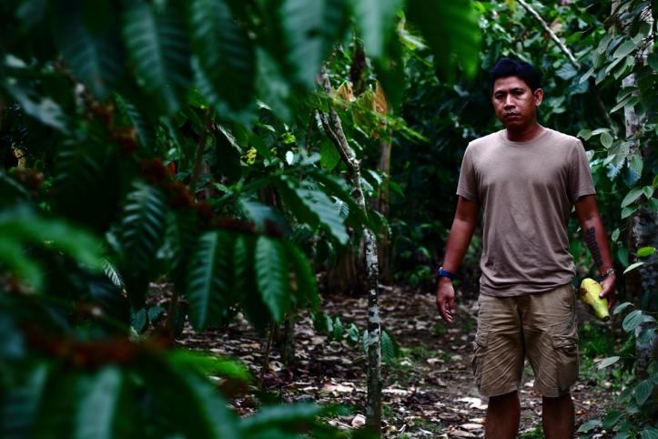 Keponakannya Markus yang sudah lupa jalanan di Lampung. Begh! Gajah saja tidak pernah lupa jalan.