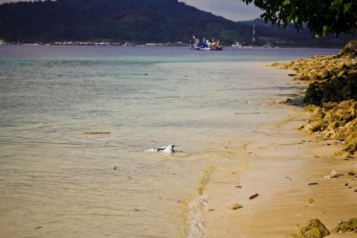 Sepanjang pantai ini isinya sampah plastik dan banyak sekali sandal bekas.
