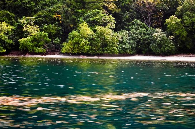 Lautnya bersih, biru dan terumbu karangnya bagus. Tapi pemandangan terhalang sampah.