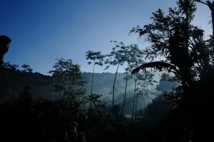 Bangun pagi dihadiahi kabut dan matahari hangat.