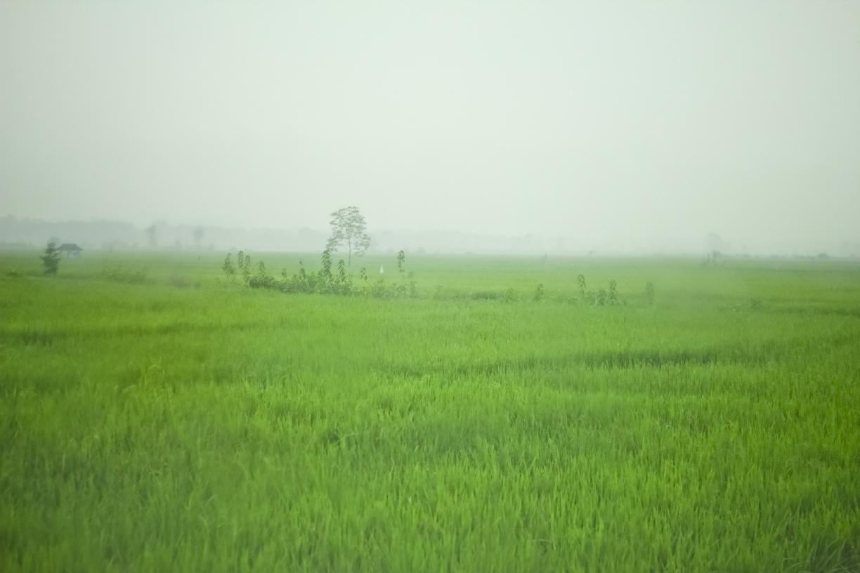 Lampung090