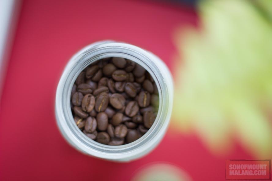 biji kopi dingin dari sonofmountmalang.com-10