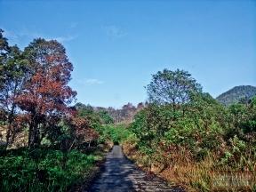 Ini kondisi jalan ke Gunung Papandayan tahun 2012. https://sonofmountmalang.com/2012/10/31/gagarutan-di-gunung-papandayan/