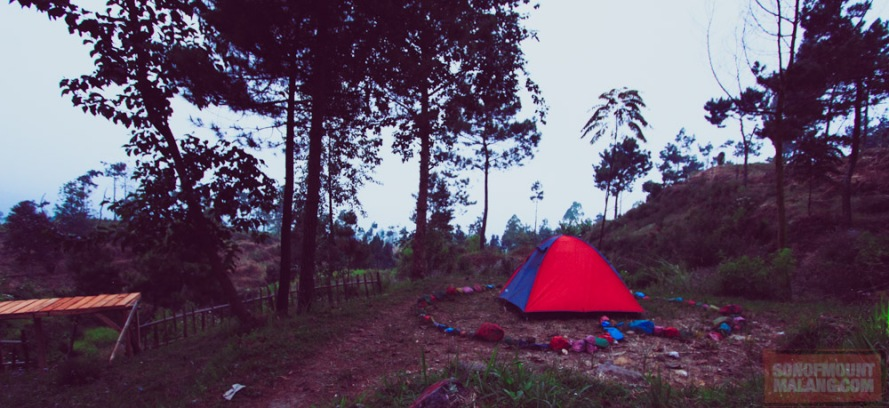 Papandayan Camping Ground128