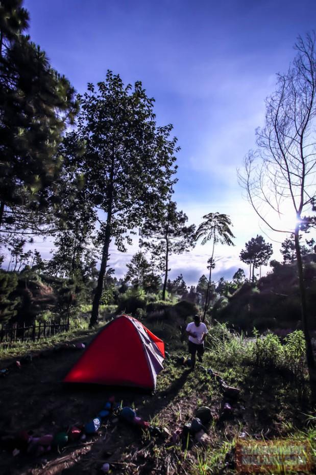 Papandayan Camping Ground148