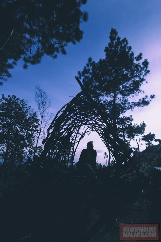 Papandayan Camping Ground151