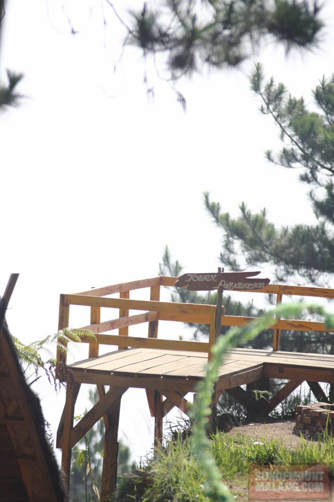 Papandayan Camping Ground185