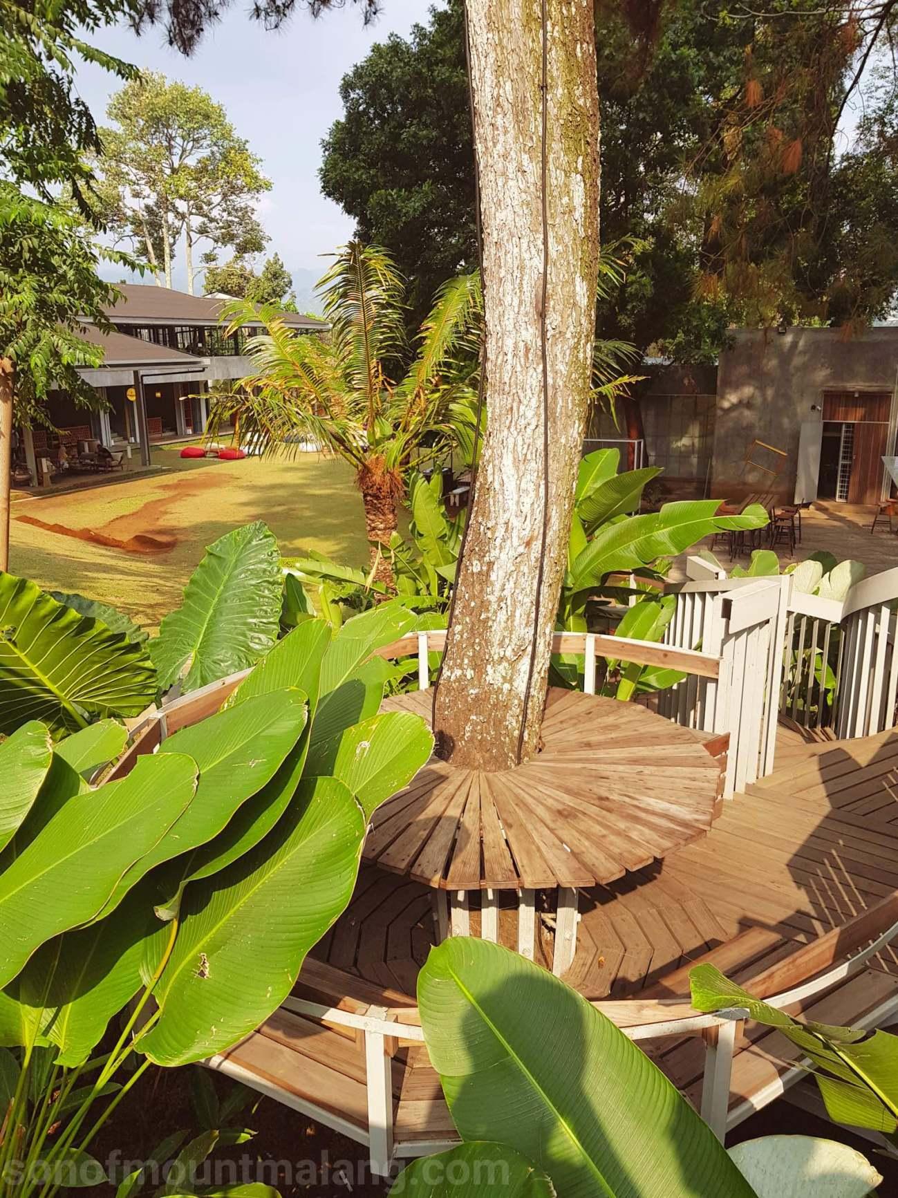 Nara Park Rancabentang14
